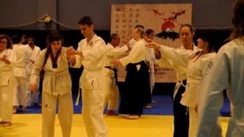 айкидо школа семинар