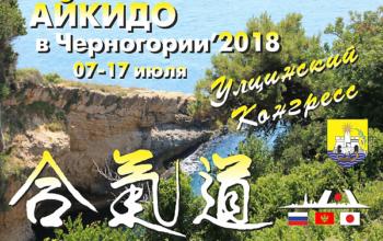 летний лагерь айкидо в Черногории