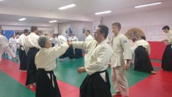 Муцуко Минегиши семинар айкидо Айкикай